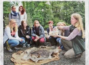 """""""Hier hinten sitzt das Gehirn, dahinter kommt das Rückenmark aus dem Schädel"""": Waldpädagogin Simone flohr erklärt die Funktion eines Keiler-Kopfes."""